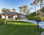 24751 Bay Bean Ct, Bonita Springs image