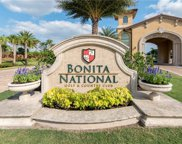 28525 Longford Ct, Bonita Springs image