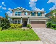 11824 Frost Aster Drive, Riverview image