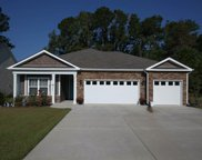 214 Swallowtail Ct., Little River image