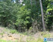 LOT 9 Woodland Lake Dr Unit 9 AND 51, Mccalla image