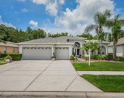 11235 Wedgemere Drive, Trinity image