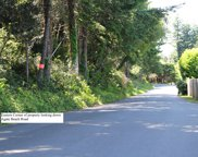 Agate Beach Road, Port Orford image