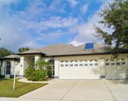 3208 48th Street E, Palmetto image