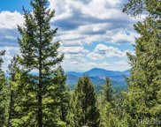 31496 Kings Valley, Conifer image