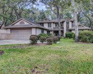13 Cottonwood Lane, Hilton Head Island image