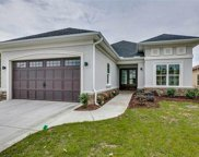 1411 Whooping Crane Dr, Conway image