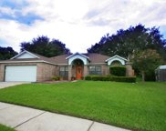 3486 WHITE WING RD, Orange Park image