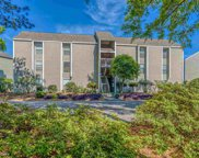 62 South Cove Pl. Unit 3F, Pawleys Island image