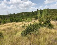 Lot 4 Tall Forest, Bastrop image