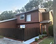 10520 Winrock Place, Tampa image