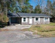 495 Annie Village Rd., Georgetown image
