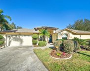 2602 Greatview Place, Valrico image
