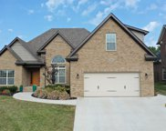 12025 Poplar Meadow Lane, Knoxville image