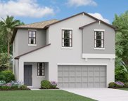 10004 Rosemary Leaf Lane, Riverview image