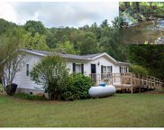 20751 Joe Brown Hwy, Murphy image