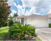 8004 Saint James Way, Mount Dora image