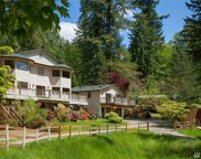 19610 290th Ave SE, Maple Valley image