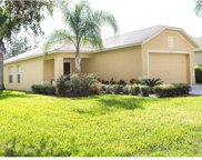 18173 Canal Pointe Street, Tampa image