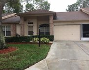 9726 Sweeping View Drive, New Port Richey image