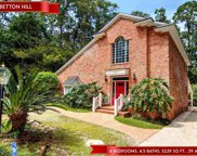1522 Belleau Wood Dr, Tallahassee image