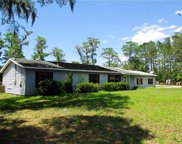 17351 Chinaberry Road, Lutz image