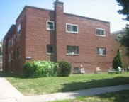 8327 Christiana Avenue Unit 1E, Skokie image