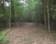 Lot 21 Buck Mountain Road, Purlear image