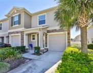 10419 Red Carpet Court, Riverview image