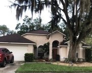 28731 Raleigh Place, Wesley Chapel image