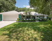 2176 Eagles Rest Drive, Apopka image