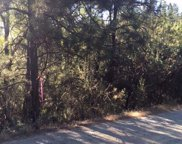4545  PRETTY GOOD Road, Placerville image
