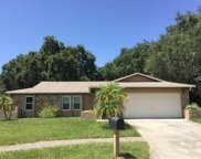 112 Meadowcross Dr, Safety Harbor image