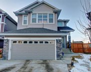 441 Saddlelake Drive Northeast, Calgary image