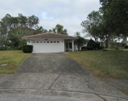 1632 Heather Place, Palm Harbor image