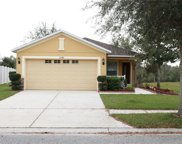 12340 Field Point Way, Spring Hill image