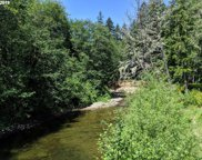 28940 SALMON RIVER  HWY, Grand Ronde image