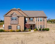 54 Alexander Manor Way, Simpsonville image