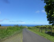 Kamee Homestead RD, Big Island image