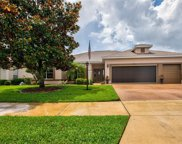 3732 Mulberry Grove Loop, Leesburg image
