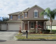 13544 Riggs Way, Windermere image