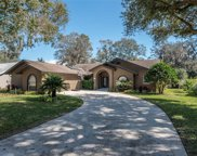 2906 Clubhouse Drive, Plant City image