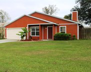 589 ARTHUR MIDDLETON CIR, Orange Park image
