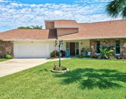 10 Chestnut Ct, Palm Coast image