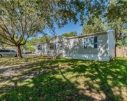 10424 Goshawk Drive, Riverview image