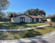 4106 Hollow Hill Drive, Tampa image