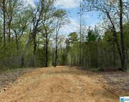 Hwy 11 Unit Tract 2, Springville image