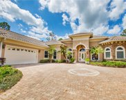 35619 High Pines Drive, Eustis image