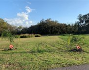 3017 Beautiful Creek Lane, Plant City image