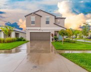 10232 Cool Waterlily Avenue, Riverview image